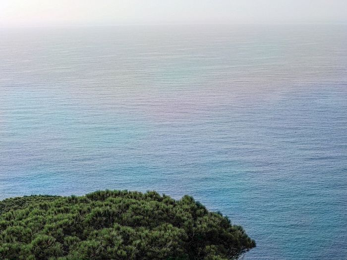 Beach Costa Brava Beauty In Nature Scenics - Nature Tranquility Land Nature Plant Water No People High Angle View Tranquil Scene Day Idyllic Landscape Environment Outdoors Sky Green Color Tree Aerial View Beauty In Nature Tranquility Sea Plant Tree Nature Growth Non-urban Scene Land