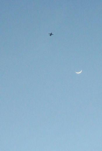 飛行機と折れそうな三日月! Airplane Enjoying Life Taking Photos Moon Airplanes The Moon 黄昏 シルエット部 Silhouettes Silhouette