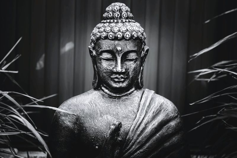 Lifestyles Photographer Perthphotographer Photography Is My Escape From Reality! Perthstagram Photography Perth Western Australia Perthphotography Indoors  Serenity_pictures Buddhastatue BUDDHA !! Calming Image Peaceful And Serene Calmness Within Calming Background Buddha Statue People Close-up