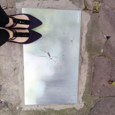 @anescherrer te dedico a Pelebomfim de hoje! 💗 BomFim Portoalegre  Poa Intervençãourbana Artederua Arteurbana Streetart UrbanART Artecallejero Arteurbano Bomdobomfim