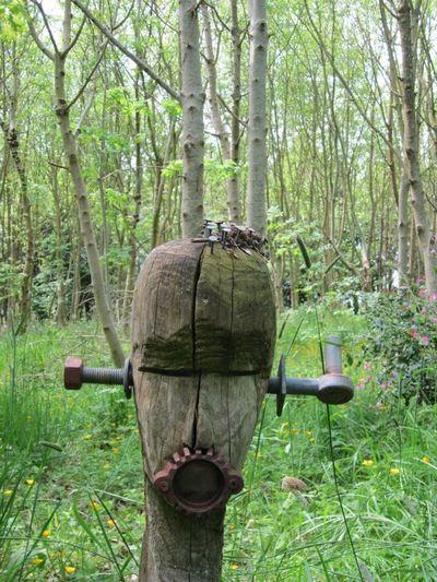 Wooden Head Art In Woodland