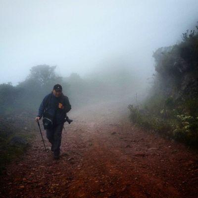 Caminando entre neblina y frailejones por los caminos del páramo Las Coloradas en Tachira  Venezuela Gotravelfree Gf_venezuela Gf_colombia IG_GRANCARACAS IgersVenezuela Insta_ve Instapro_ve IG_Venezuela InstaLoveVenezuela Instafoto_ve Instaland_ve Destinomaschevere Tequierovenezuela Thisisvenezuela Icu_venezuela Ig_lara Igworldclub Ig_tachira IG_Panama Ig_merida Instavenezuela Elnacionalweb Venezuelapaisajes instanature gf_daily venezuelacaptures