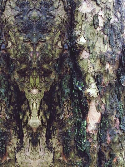 Art Is Everywhere Tree Trunk Textured  Bark Visionary Sacred Geometry Elf Fantasy Fair Totem Tree Bark Patterns Beautiful Bark Tree Bark Texture Psychedelia  Psychedelicart Psychedelic Psyart Shamanic Psychedelicdreams Druid Power Forest Spirits Druid Druid's Secret Place Magic Forest Tree Spirits Tree Trunk Magical