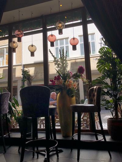 Turist Cafe Window