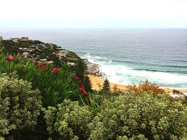 Beach Landscape Sea Headland Horizon