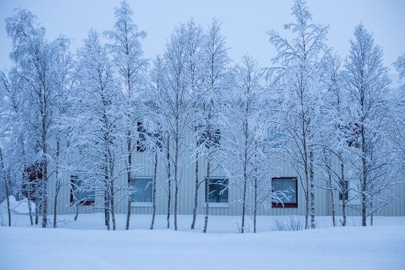 Inari Lapland