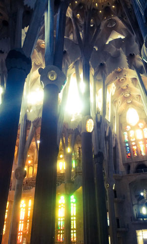 Colour Of Life Achitecture Church Architecture SPAIN Barcelona Segrada Familia Stunning