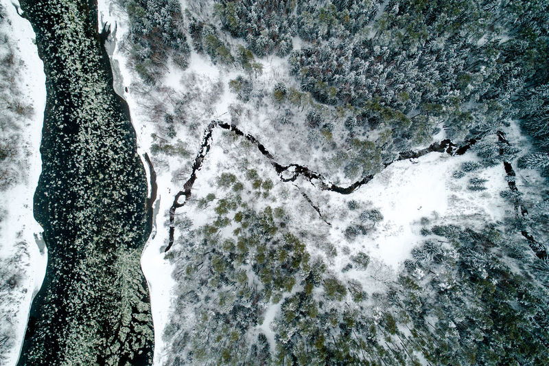 Lithuania Baltic Winter Winter Wonderland Aerial View Aerial Aerial Landscape Snow Cold White Wild Landscape Forest Woods River Above Cold Temperature Water Flowing Water Purity Power In Nature Ice Floe Neris Environment Frozen