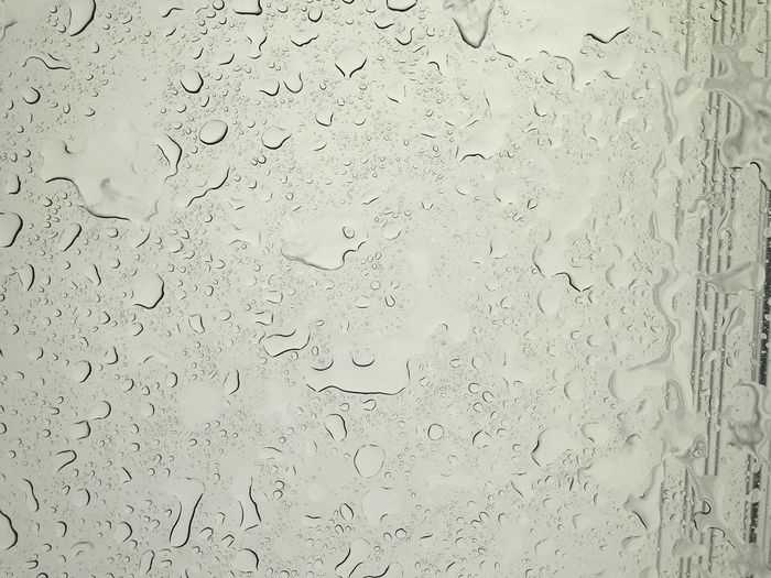 Backgrounds Full Frame No People Wet Water Drop Window Rainy Season RainDrop Close-up Transparent Textured  Indoors  Nature Glass - Material Day Rain Pattern Flock Of Birds