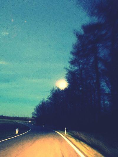 Street,tree,moon