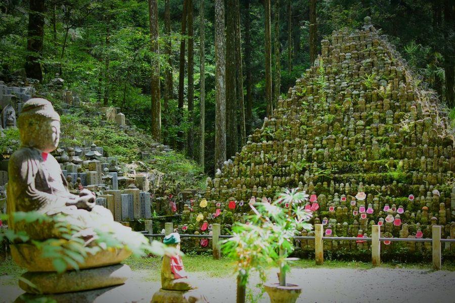 Koyasan Japan Wakayama Jizou Green Relaxing 高野山