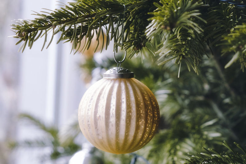 Close-up of christmas bauble on tree