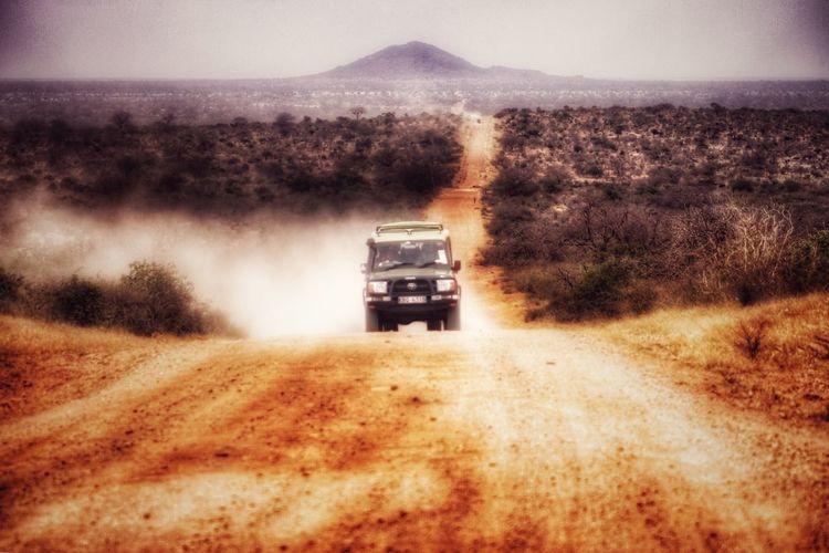 My Africa. Wildlife Wildlife & Nature Kenya Taking Photos Africa Savana Safari Travel Nature Photo Myafrica Jeep Landcruiser  Roadtrip Roadlife