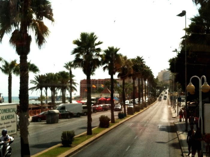 Relaxing Taking Photos Palm Trees Street Beach Day Beach Front Hot Day Sunshine SPAIN Holiday Hanging Out Beach