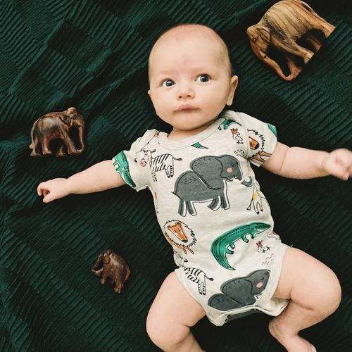 Close-Up Of Cute Baby Boy Lying By Elephant Structures On Bed