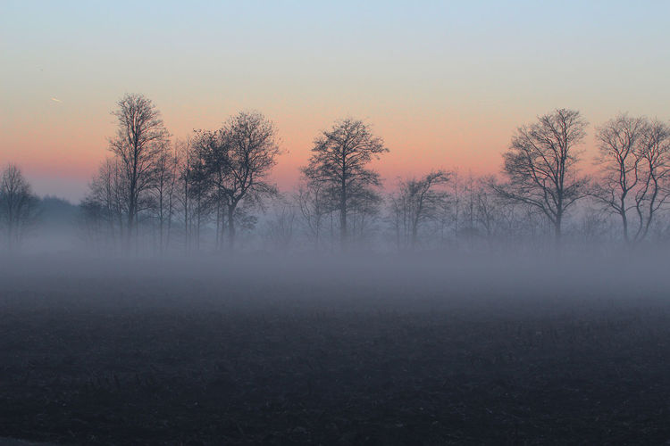 Bare Trees On Landscape Against Sky During Sunset