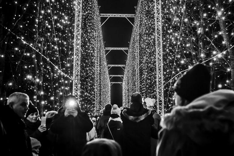 Crowd at illuminated christmas tree at night