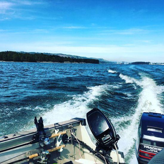 Kalama Washington Columbia River Springer Salmon Chinook Pacific Northwest  Fishing Blue Wave