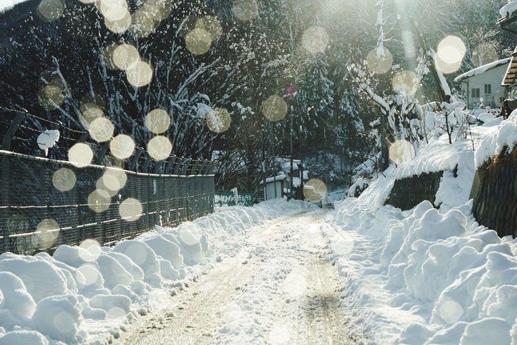 雪かき 寒い 夕方 Japan Iwate Snow Snow ❄ Eye4photography  Eyeemphotography EyeEm Gallery EyeEm EyeEmBestPics EyeEm Nature Lover EyeEm Best Shots
