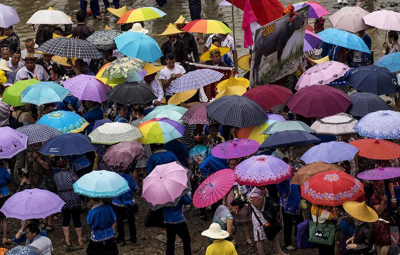 China 2017 China China Photos Chinese Culture China Dragon Festival Chinesefestival Umbrella Umbrellas Umbrella☂☂ Umbrellastreet Colourful