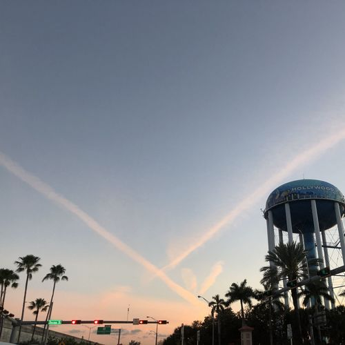Low angle view of palm trees against sky at sunset
