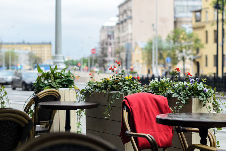 The Art Of Street Photography Plant Flower Chair Seat Architecture Flowering Plant City Nature Day Built Structure Building Exterior No People Table Transportation Freshness Focus On Foreground Mode Of Transportation Selective Focus Outdoors Empty Flower Head Sidewalk Cafe Red Color Moscow