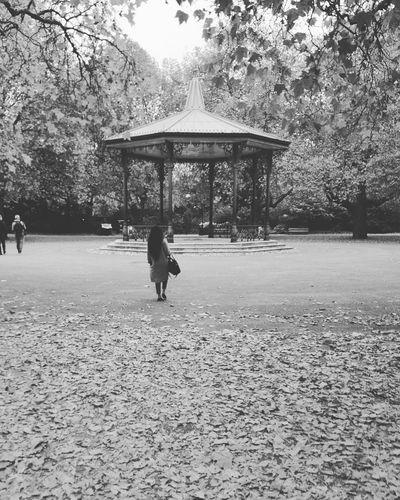 Girlfriend Shot Blackandwhite Trees Scenery Battersea Park First Eyeem Photo