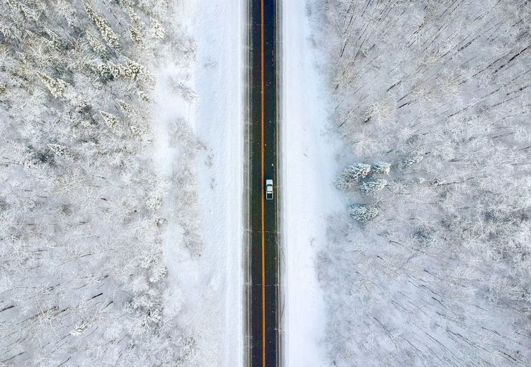Truck in the middle of a winter forest