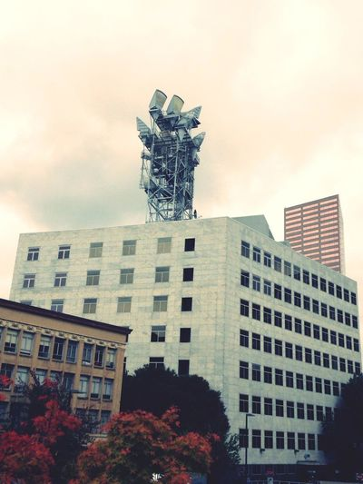 Hands Reaching For The Sky Do You See What I See? Metropolis