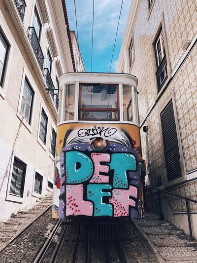 Detlef City