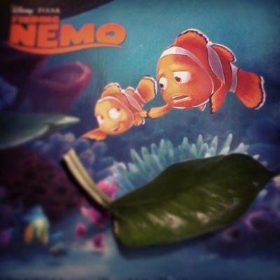 Nemo AHA Heri Morning sunday
