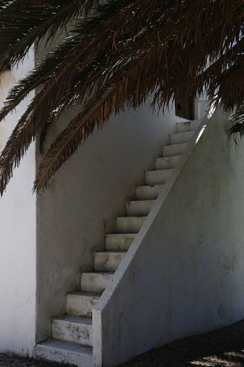 Staircase by wall