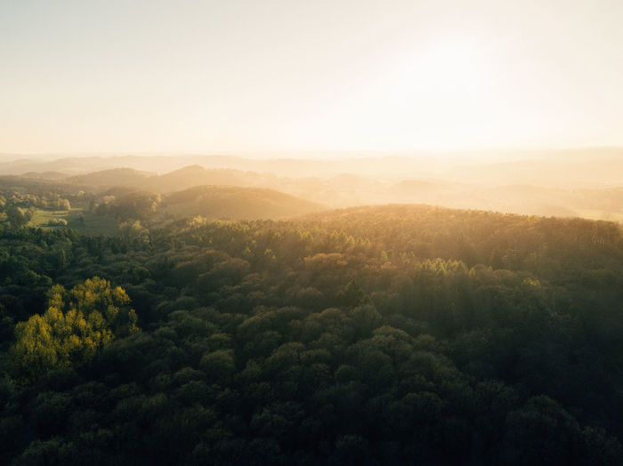 sunset over the woods Adventure Aerial Photography Aerial View Beauty In Nature Drone  Dronephotography Earth Exploring EyeEmNewHere Fog Forest Germany Landscape Mountain Nature No People Outdoor Outdoor Photography Outdoors Sky Sun Sunset Travel Travel Photography Tree