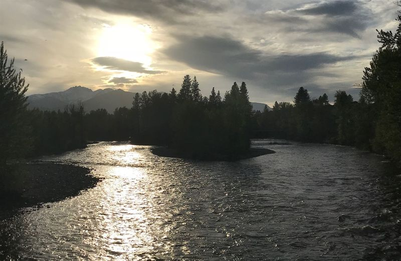 Methow River in the Setting Sun EyeEm Nature Lover River Methow River, Washington Methow Valley Tree Sky Water Plant Cloud - Sky Tranquility Sunlight Tranquil Scene Beauty In Nature Scenics - Nature Nature Sunset No People Reflection Growth Sunbeam Non-urban Scene Sun Outdoors