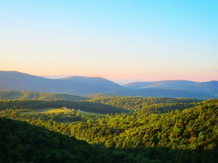 The Premium Collection The EyeEm Collection Landscape Morning Light Western Maryland Allegany Mountains Tree Rural Scene Sunset Forest Agriculture Herb Lush - Description Hill Valley Mountain Peak Mountain Ridge Mountain Range