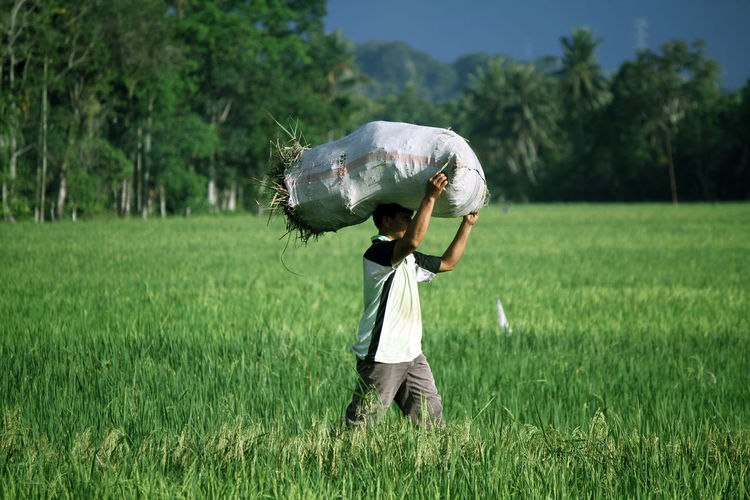 Farmer carrying sack on field against tree