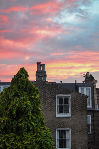Unreal summer sunset in London Brick Wall London The Architect - 2018 EyeEm Awards Architecture Beauty In Nature Brick Building Building Exterior Built Structure Cloud - Sky English House Low Angle View Nature No People Orange Color Outdoors Pink Color Plant Residential District Scenics - Nature Sky Sunset Tree Window