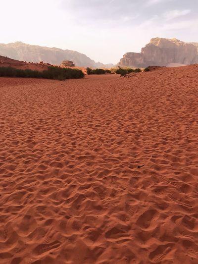 Traces in the sand of wadi rum desert in jordan