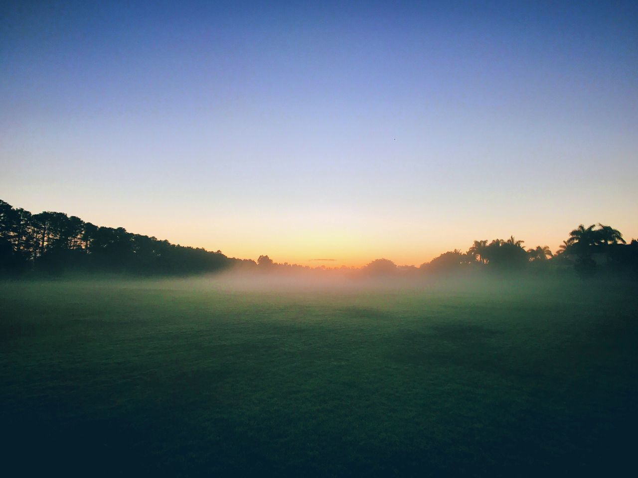 landscape, nature, tranquil scene, tranquility, field, beauty in nature, scenics, clear sky, tree, grass, sunset, idyllic, no people, outdoors, silhouette, sky, hazy, day, golf course