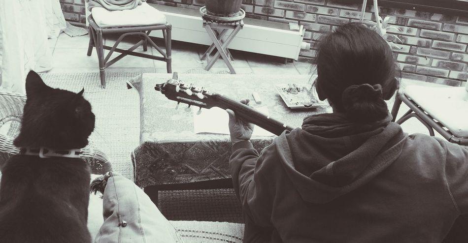 A Bird's Eye View Music Guitar BLackCat Bossanova ShareMomentsLiveLife