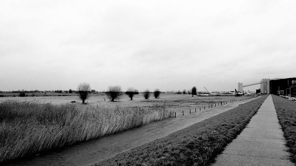 High Water Level River Forelands Uiterwaarden River Dikes Dike Overijssel Genemuiden Zwarte Water High Water The Netherlands Holland Black And White Bnw Blackandwhite Storm Trees Trees And Sky Trees And Water Outdoors Sky No People Nature Water Landscape Beauty In Nature