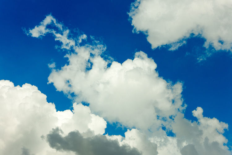 Cloud - Sky Sky Beauty In Nature Low Angle View Blue Scenics - Nature Tranquility No People White Color Backgrounds Nature Tranquil Scene Day Outdoors Idyllic Full Frame Softness Sunlight Heaven Non-urban Scene Meteorology
