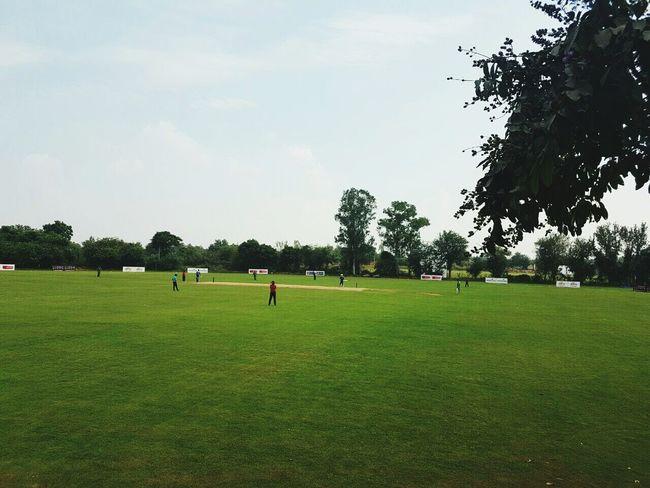 Sky Tree Grass Sportsman Outdoors Day Sport People Cricket! Cricket Field