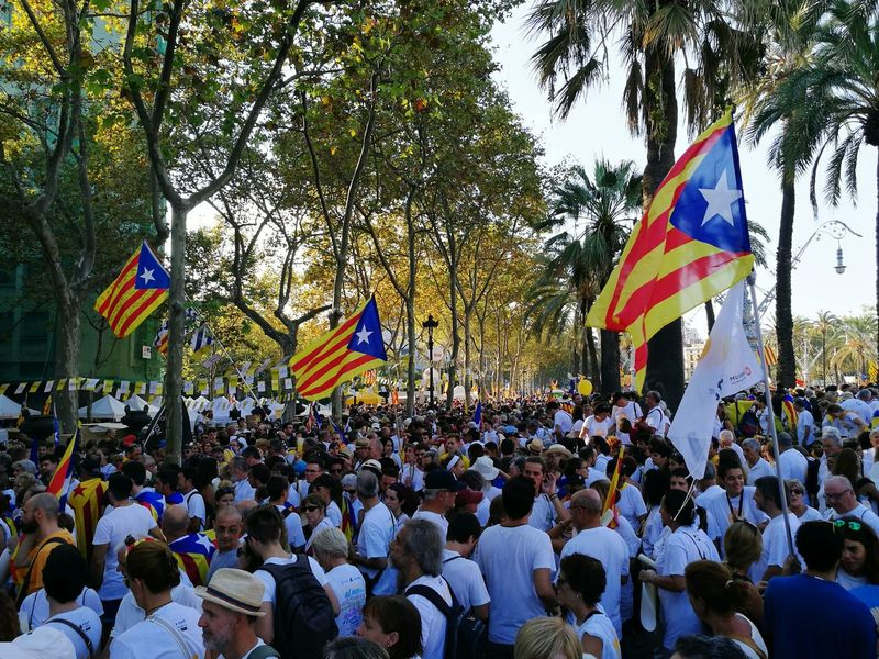 Catalonia Catalonia Is Not Spain Independence Day FreeCatalonia City Life Manifestation Diada Volem Votar Bcn National Day Of Catalonia