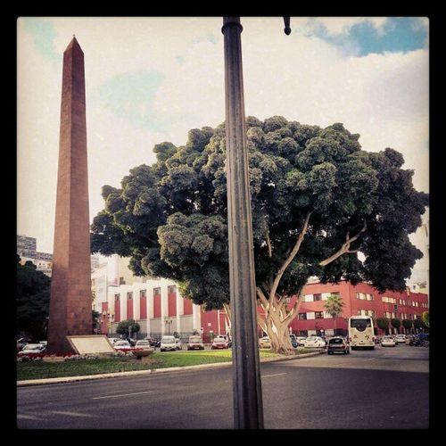 Una de las estampas de mi día a día, El Obelisco de Tomás Morales, en Las Palmas de Gran Canaria. ElObelisco Tom ásMorales LasPalmas Laspalmasdegrancanaria LPGC GranCanaria IgersLpa IgersLasPalmas IgLpa IgLasPalmas Igers Ciudad City Obelisco Tree BigTree Árbol Amazing PicOfTheDay PhotoOfTheDay FotoDelDía Instagram