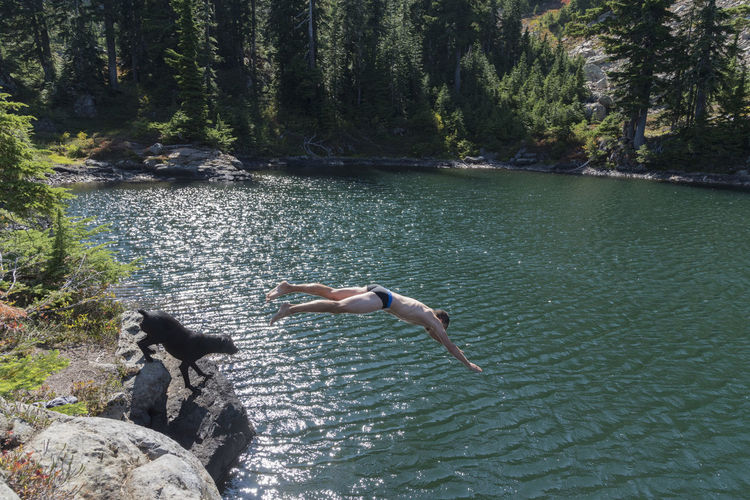 High Angle View Of Man Diving Into Lake At Forest