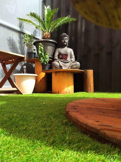 Terrasse Printemps Bouddha  Decoration Afternoon Sun Terrace Plant Plants Touret PhonePhotography