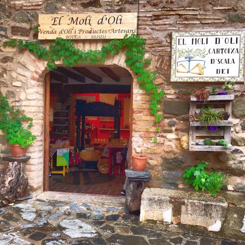 Old fashion European town of wine and olive oil. Entrance to the store. Built Structure old Building Exterior Outdoors No People Celler wine Text Western Script Communication Day Architecture