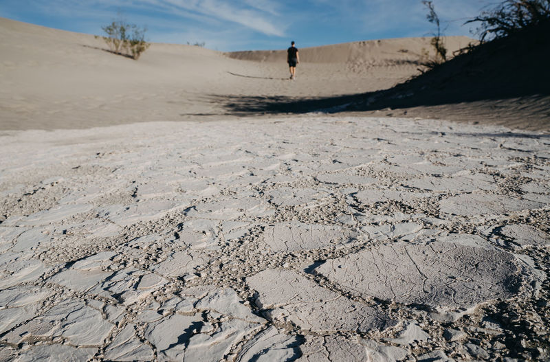 Death Valley Death Valley National Park Dunes Dunescape California Dessert One Person One Person Only Land Sand Scenics - Nature Landscape Nature Arid Climate Climate Day Tranquility Tranquil Scene Desert Environment Barren Remote Extreme Terrain Beauty In Nature Sunlight Outdoors Sky Dry Dry Landscape