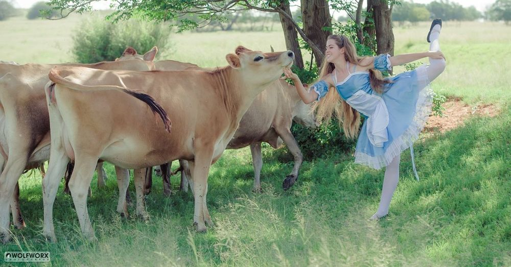 Dance Dancing Young Adult Mammal Grass Animal Tree People Outdoors Cow